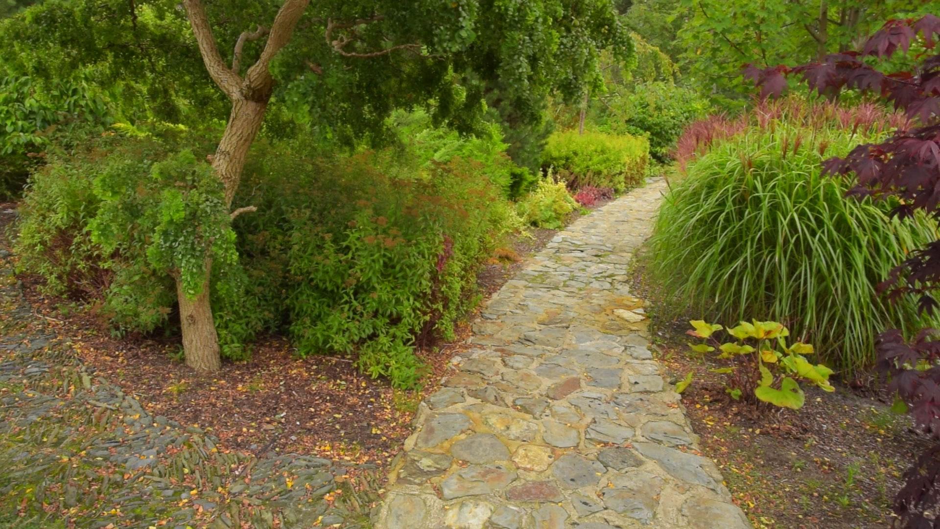 Landscape path